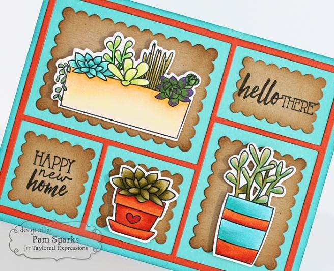 Pam Sparks Simply Succulents Close Thursday
