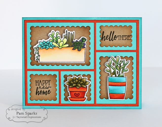 Pam Sparks Simply Succulents Thursday