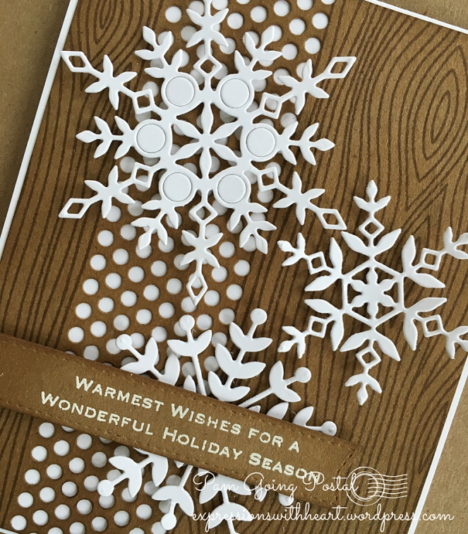 Pam Sparks SSS kraft snowflakes Close