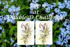 Double D Challenge Top 3.jpg